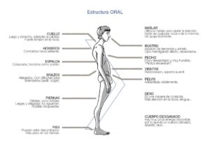 Estructuras Bioenergéticas. Carácter Oral